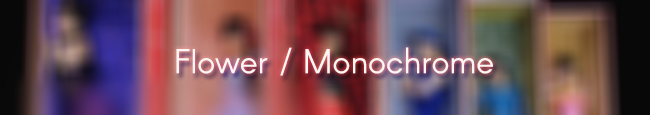 Monochrome - Tradução