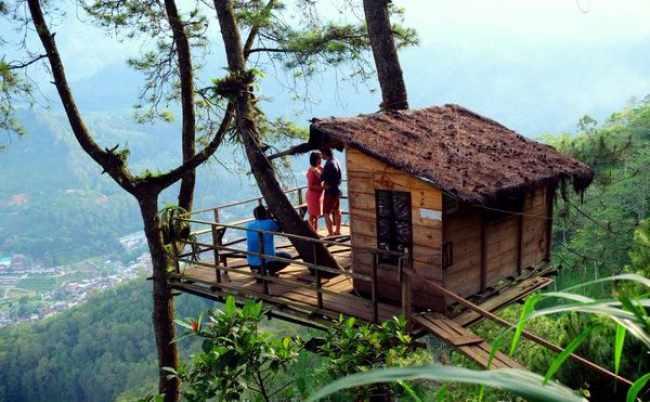 Dimana letak wisata Omah Kayu ?
