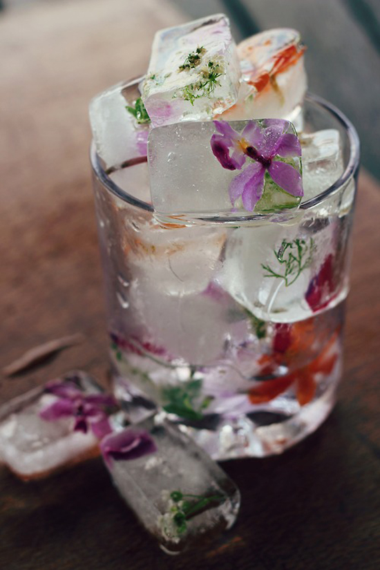Summer fun with edible flowers - flower ice cubes