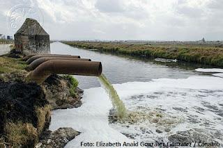 Pueden aguas residuales tener patógenos como SARS-CoV-2