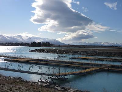 Granja de salmones a las afueras de Twizel, en Nueva Zelanda