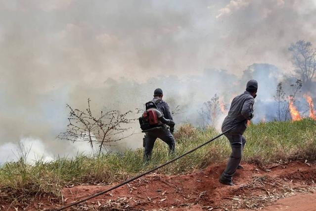 A imagem mostra dois homens que são bombeiros jogando água no fogo que estava destruindo a Estação. No céu, se vê muita fumaça cinza. E também é visível algumas árvores já destruídas.