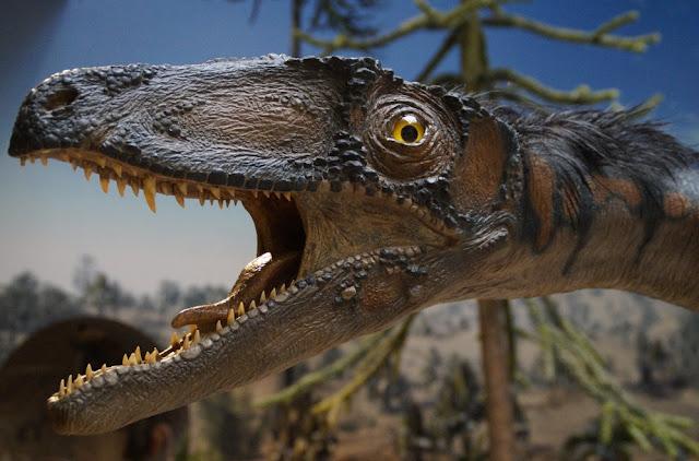 Fosil Telur Dinosaurus Ditemukan di China