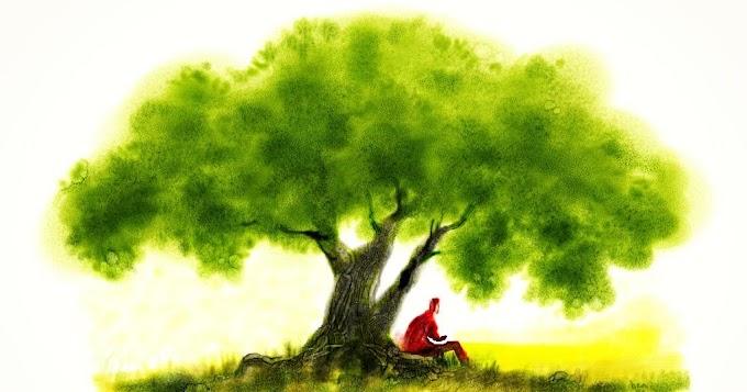 Árvore dos problemas