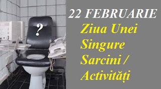 22 februarie: Ziua Unei Singure Sarcini / Activități