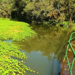 Represa no Parque do Caracol, em Canela