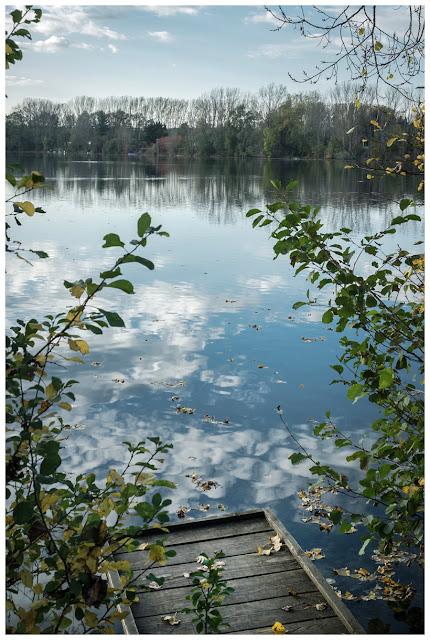 Der See in Kretzschau.