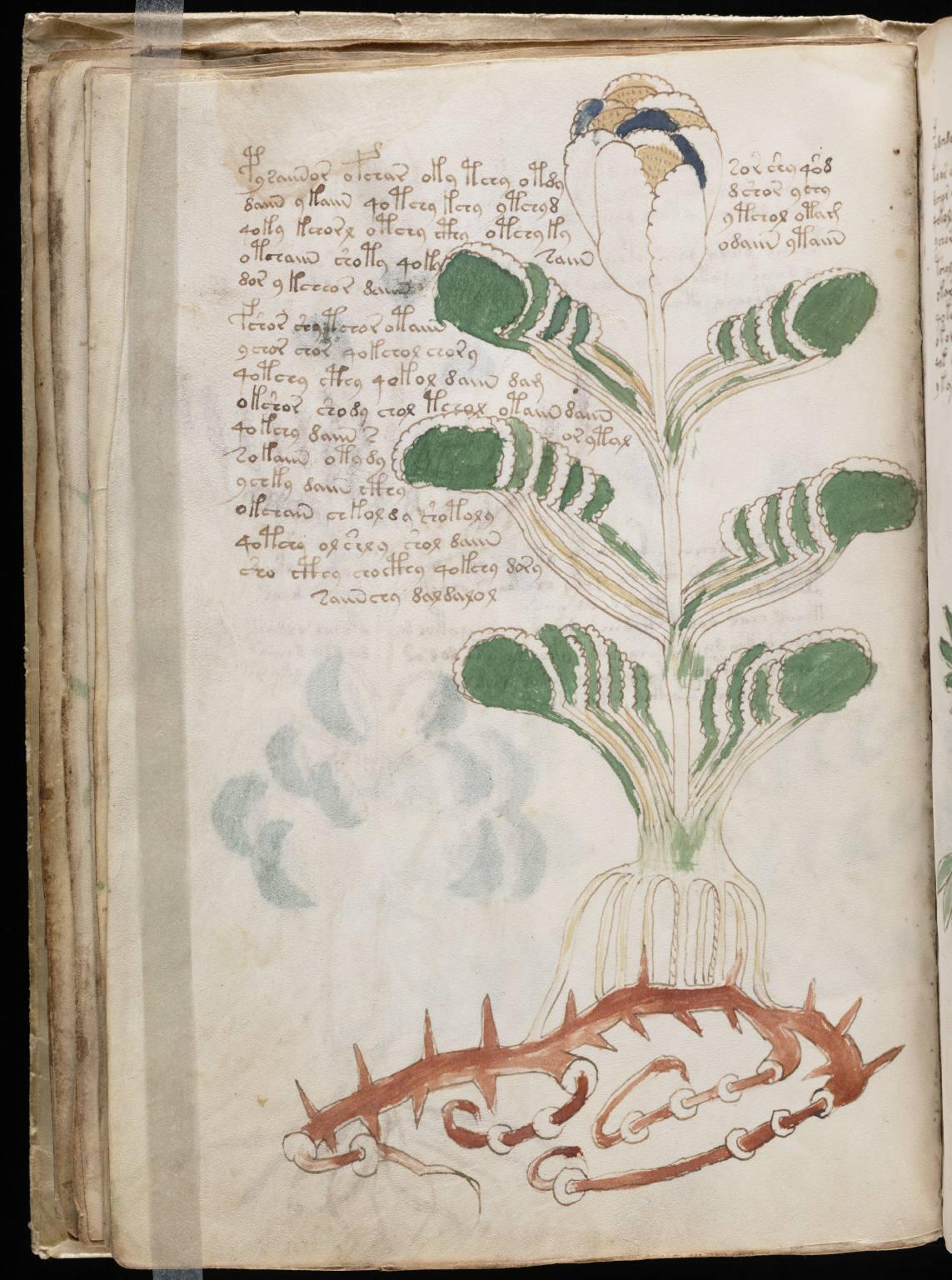 manuscrito044