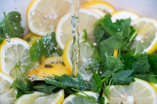 Lemon Balm weight loss skin improvements