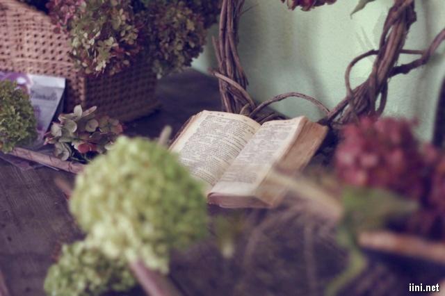 sách trong không gian hoa đẹp