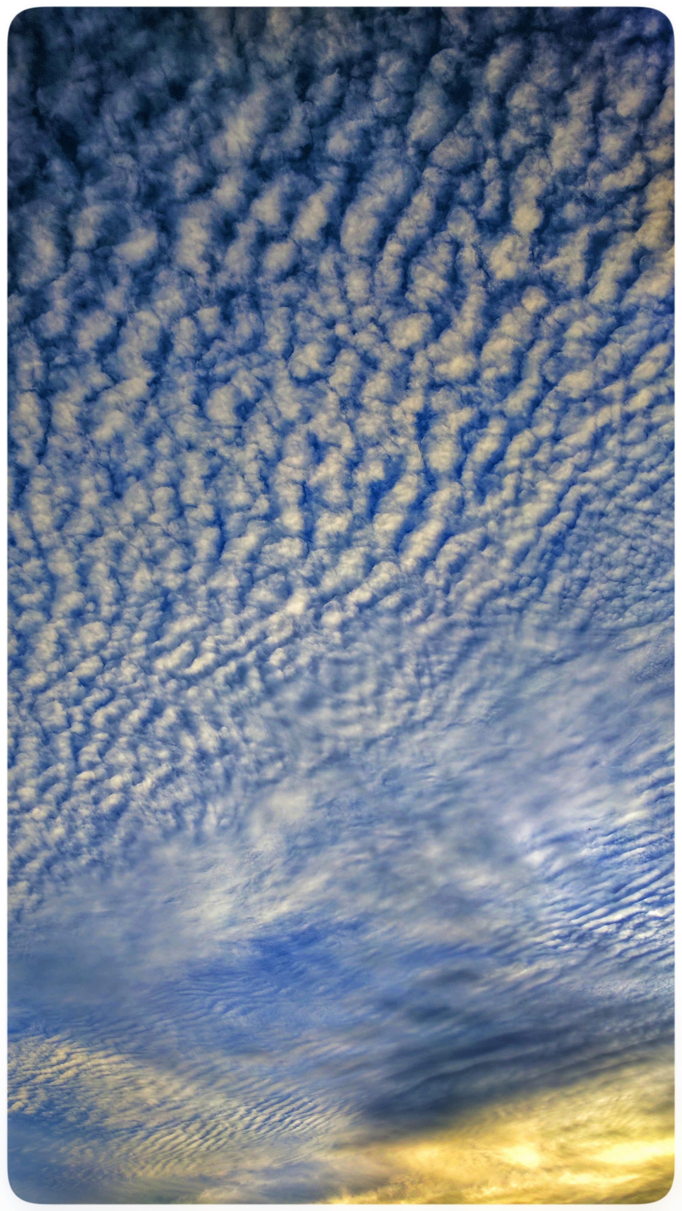 Dappled clouds