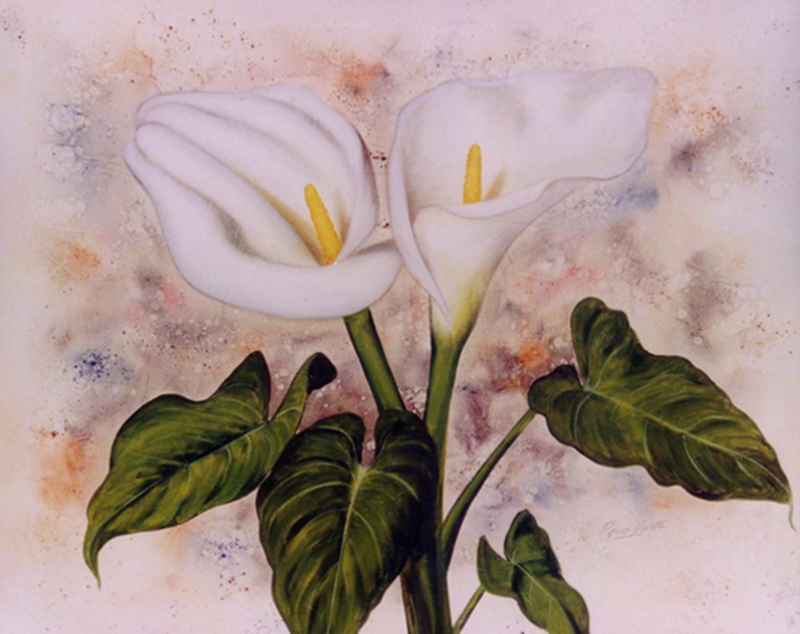 Imágenes Arte Pinturas: Cartuchos Cuadros con Flores en Oleo