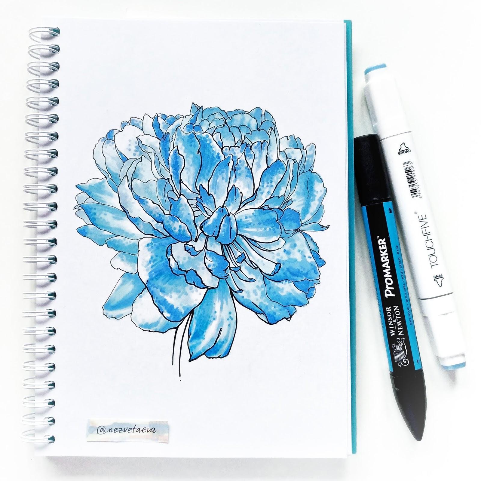 Blue peony sketch by Sonia Nezvetaeva