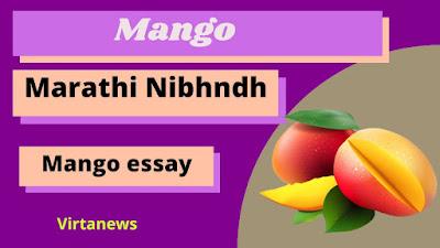 My Favourite fruit Mango Marathi Essay