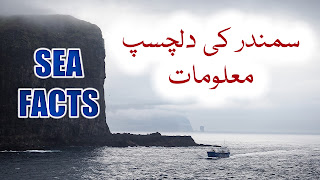 Sea Facts In Urdu Hindi Samandar Dilchasp Maloomat Samandar Jis Ka Koi Sahil Nahin