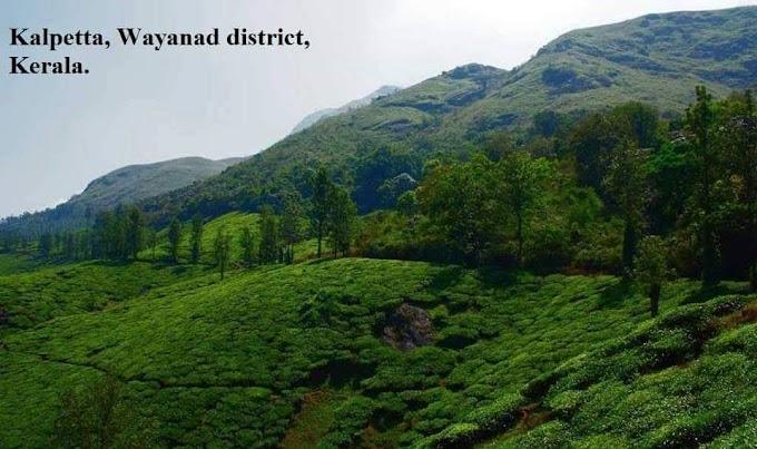 Kalpetta Wayanad , Kerala