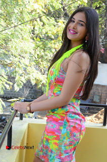 Telugu Actress Prasanna Stills in Short Dress at Inkenti Nuvve Cheppu Press Meet Stills  0070.JPG