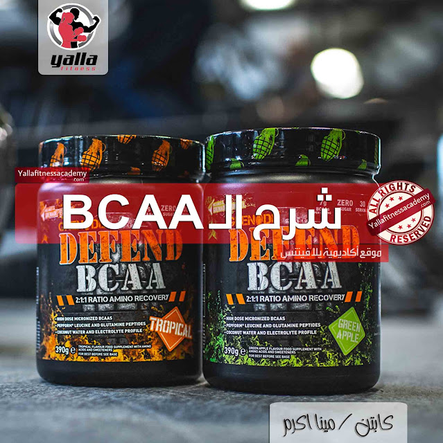 شرح تفصيلى و معلومات هامة عن الـ BCAA