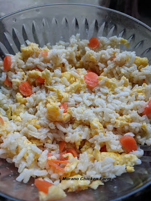 rice, eggs and vegetables for chickens