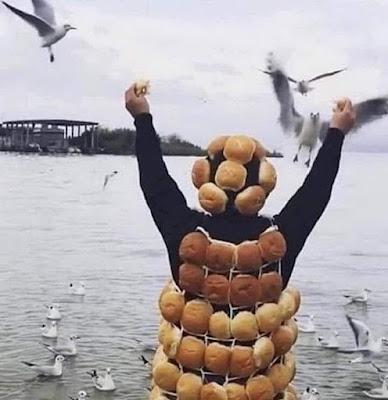 Lustige verrückte Menschen - Möwen füttern lustig