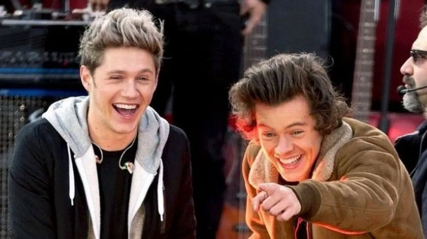 Harry Styles and Niall Horan thrill fans with their reunion