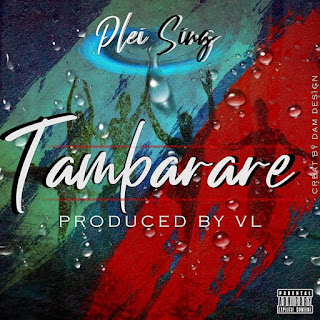 Pleising – Tambarare ( 2019 ) [DOWNLOAD]