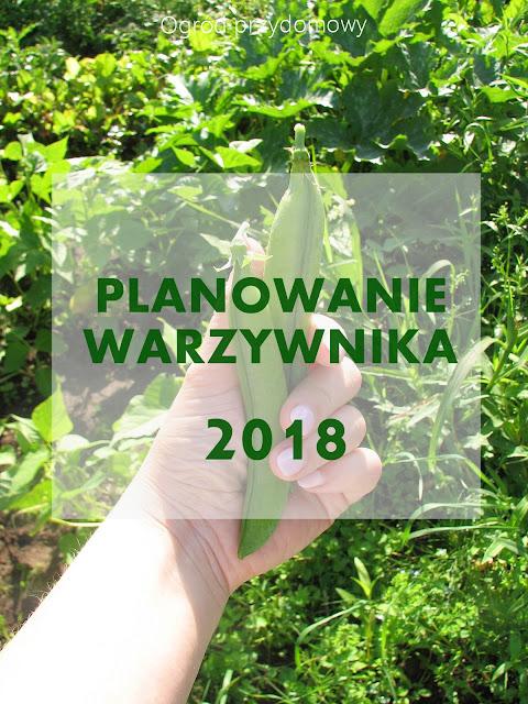 planowanie warzywnika, ogród przydomowy