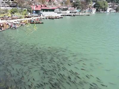 Nainital- The Lake city