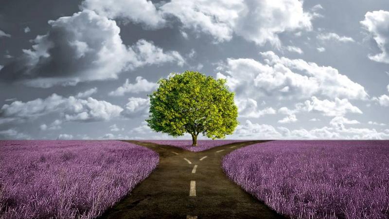 Οι δρόμοι της ζωής μας