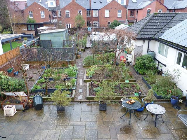 January, 2021, Garden, Winter