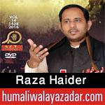http://www.humaliwalayazadar.com/2016/06/raza-haider-nohay-2014-to-2017.html