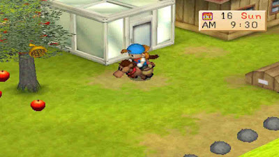 Download Harvest Moon Back to Nature Bahasa Indonesia PS1 ISO (PC/Android)