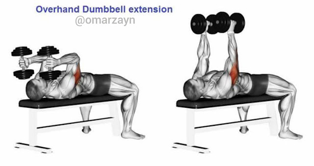lying overhand dumbbell extension triceps workout