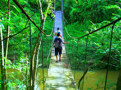 Taman Nasional Kutai.