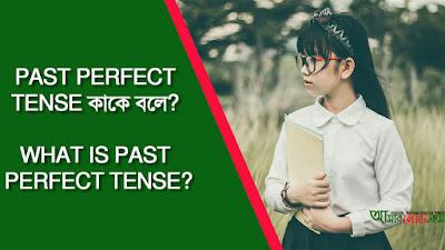 Past Perfect Tense kake bola?