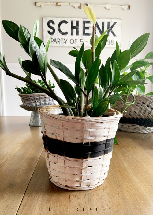 How to update thrift store baskets - paint baskets in black and white to hold plants