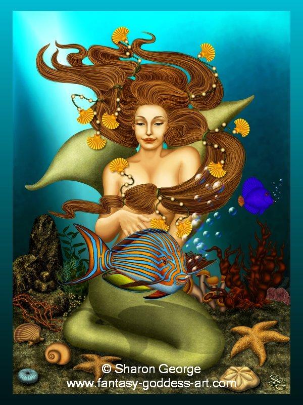 Tarot Musings Using Tarot Reversals: Tarot Musings: Mermaids And Dolphins