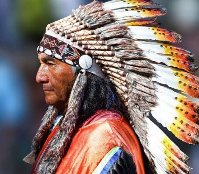 Most countries have the indigenous population of America