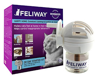 Go to first new post GOOD PRICE Feliway Diffuser Pack 48ml The secret to happy cats – £13.30 @ AMAZON UK