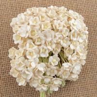 http://www.scrappasja.pl/p22166,saa-440-miniaturki-kwiatki-sweetheart-ivory-20sztuk.html