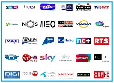 CCCAM & MG 12MONTH 15€ With All Satellite Reseller Panel Available Meo+Nos+Much More