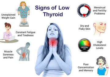 Thyroid weight gain solutions | Free Thyroid diet plan to lose 2kgs in 7 days