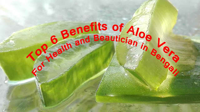 Top 6 Benefits of Aloe Vera For Health and Beautician in Bengali