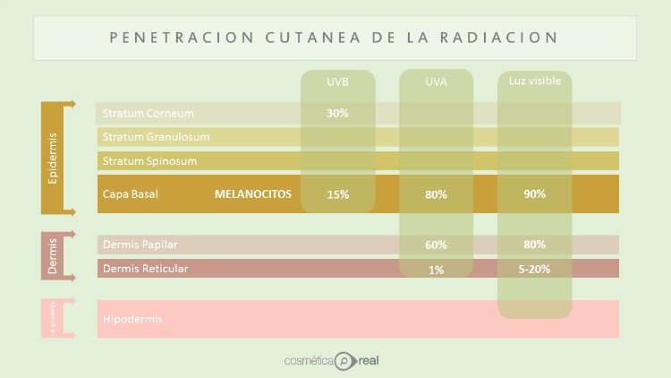Penetracion cutanea de la radiacion solar
