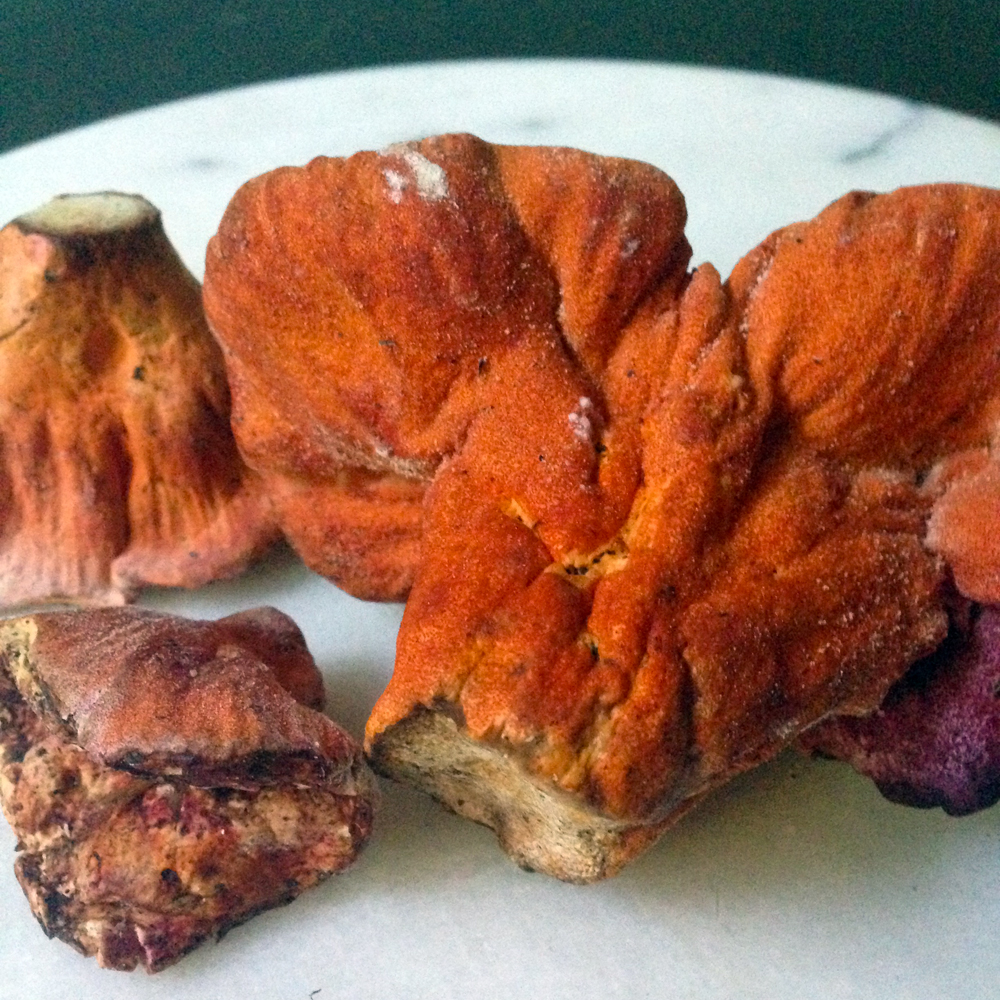 Lobster mushrooms are vegetarian-friendly.