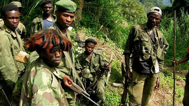 Frenchman, 3 Congolese hostages freed in Congo