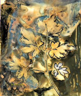 Sue Reno_wet cyanotype_image 877