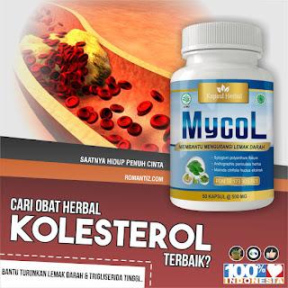 https://shopee.co.id/MYCOL-Obat-Kolesterol-Penurun-Lemak-Darah-dan-Trigliserida-Tinggi-Herbal-BPOM-i.65937506.1107194264