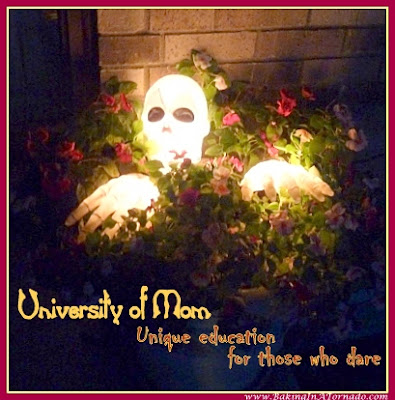 University of Mom: Unique education for those who dare | www.BakingInATornado.com | #Halloween #MyGraphics