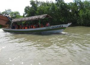 Ekowisata Hutan Mangrove Wonorejo Surabaya - Jawa Timur